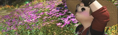 "【FF14】園芸師の評価とスキル【パッチ5.0対応】"""