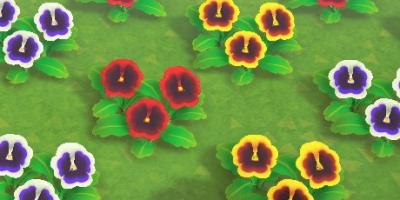 花の交配表一覧