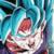[果てしない力の凌駕]超サイヤ人ゴッドSS孫悟空(界王拳)&超サイヤ人ゴッドSSベジータ(進化)